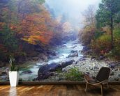 Misty Forest River mural wallpaper kitchen preview