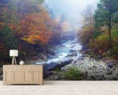 Misty Forest River mural wallpaper living room preview
