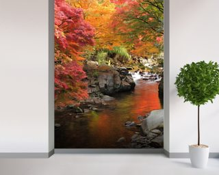 Autumn Colours, Japan Mural Wallpaper Wall Murals Wallpaper