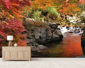 Autumn Colours, Japan mural wallpaper living room preview