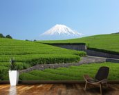 Snow Capped Mount Fuji wall mural kitchen preview