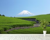 Snow Capped Mount Fuji wall mural in-room view
