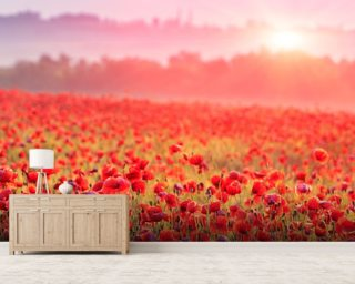 Red Poppy Sunrise Wallpaper Mural Wall Murals Wallpaper