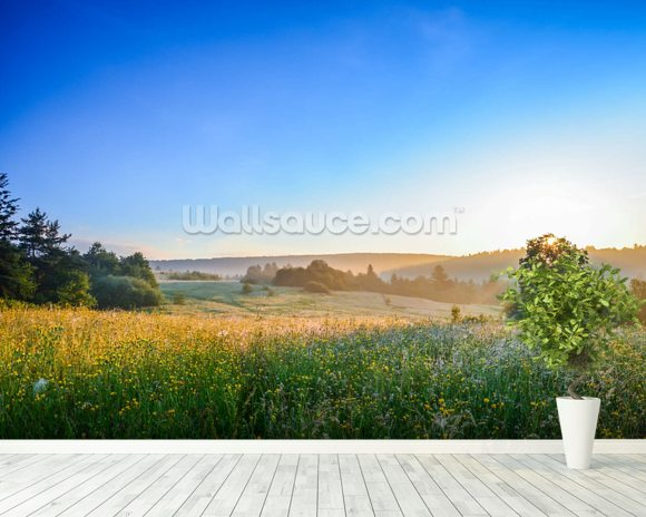 Misty Summer Sunrise mural wallpaper room setting