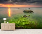 Rocks and Crabs mural wallpaper living room preview