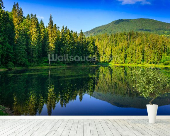 Nature's Green and Blue mural wallpaper room setting