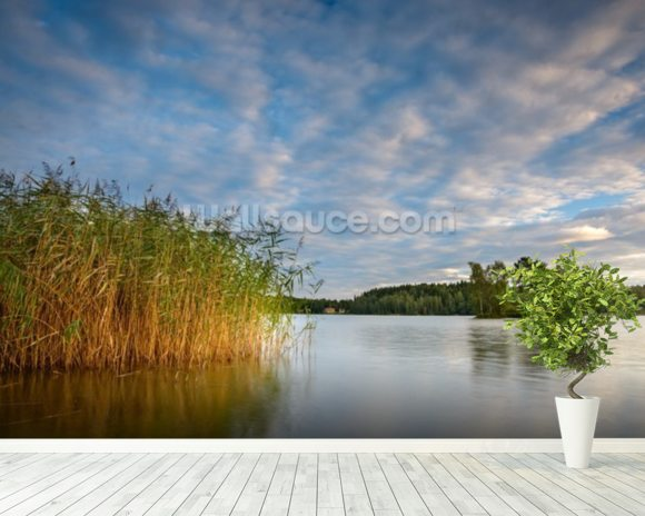Calm Lake wall mural room setting