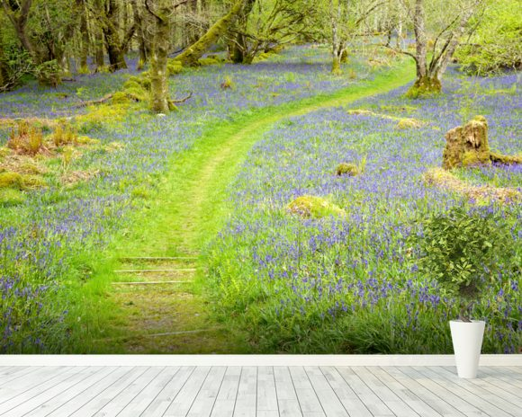 Bluebell Path wall mural room setting
