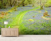 Bluebell Path wall mural living room preview