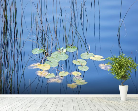 Reeds and Lily Pads wall mural room setting