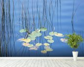 Reeds and Lily Pads wall mural in-room view