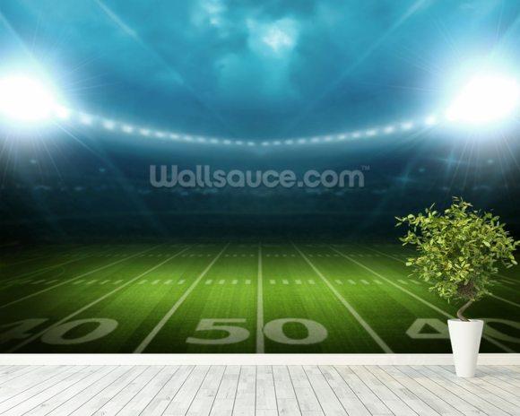 Football Stadium 2 Wallpaper Mural: U.S. Football Stadium & Football League