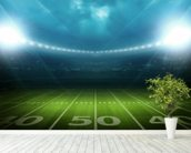 Football Stadium USA wallpaper mural in-room view