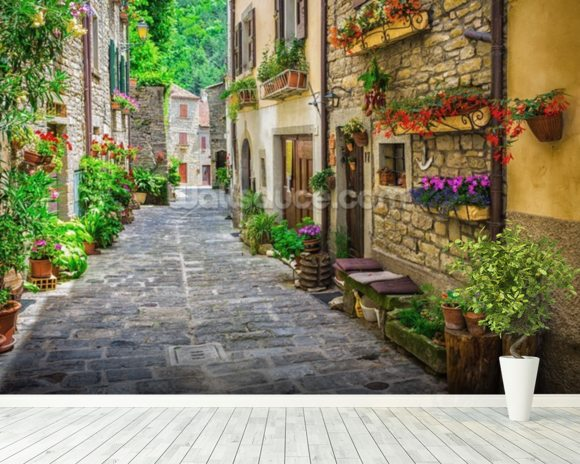 Tuscan Old Town Street wall mural room setting