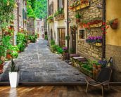 Tuscan Old Town Street wall mural kitchen preview