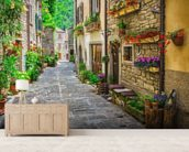 Tuscan Old Town Street wall mural living room preview