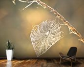 Early morning cobweb wallpaper mural kitchen preview