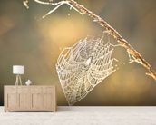 Early morning cobweb wallpaper mural living room preview