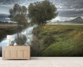 Misty morning in Richmond Park wall mural living room preview