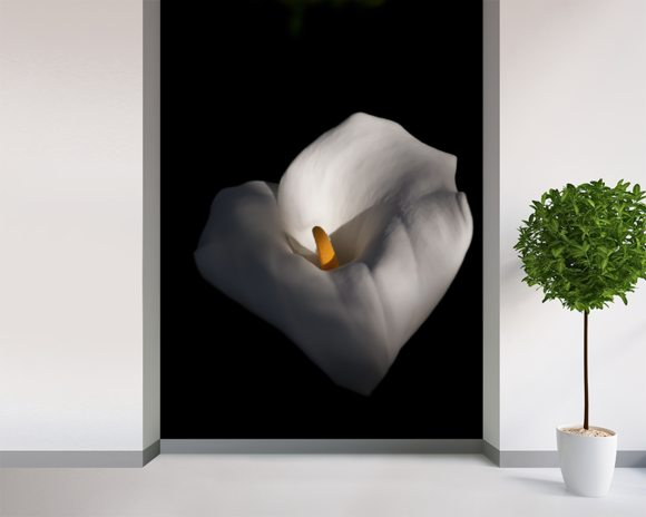 Lily mural wallpaper room setting