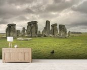 Storms over Stonehenge mural wallpaper living room preview