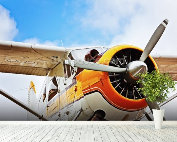 Propeller Plane wall mural room setting