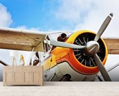 Propeller Plane wall mural living room preview