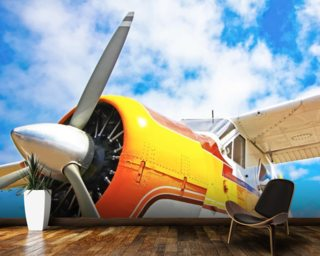 Orange Propeller Plane wallpaper mural