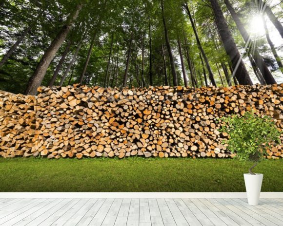 Pile of Chopped Firewood in the Woods wallpaper mural room setting