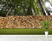 Pile of Chopped Firewood in the Woods wallpaper mural in-room view