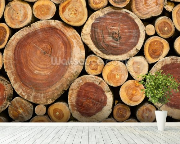 Pile of Logs mural wallpaper room setting