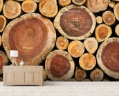 Pile of Logs mural wallpaper living room preview