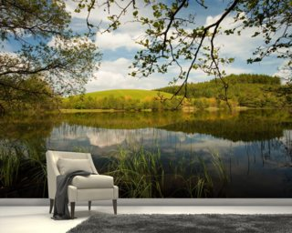Across The Loch June Wallpaper Wall Murals