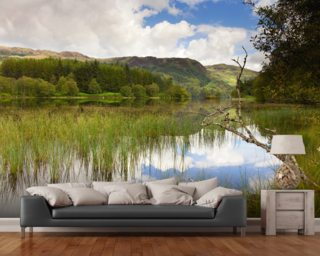 Loch Trool wall mural