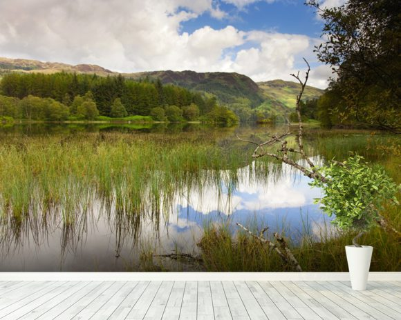 Loch Trool wall mural room setting