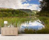 Loch Trool wall mural living room preview
