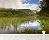 Loch Trool wall mural in-room view
