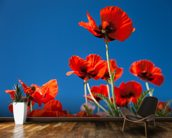 Red Poppies mural wallpaper kitchen preview