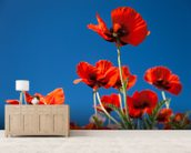 Red Poppies mural wallpaper living room preview