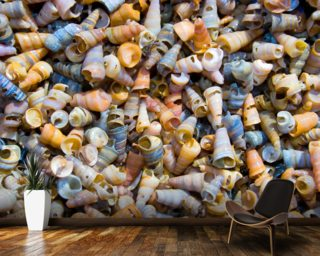 Tower Shells wall mural