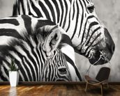 Zebra family wall mural kitchen preview