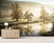 Chatsworth Misty River wall mural living room preview