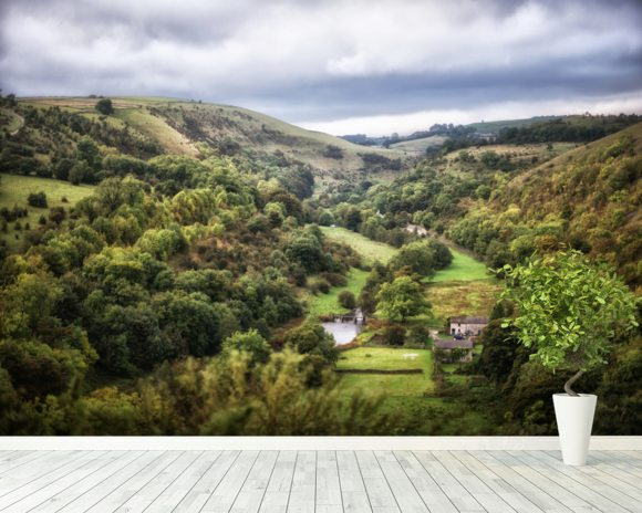 Monsal Head mural wallpaper room setting