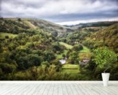 Monsal Head mural wallpaper in-room view