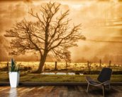 Tree Dawn wallpaper mural kitchen preview