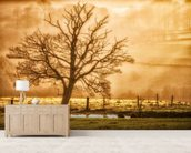 Tree Dawn wallpaper mural living room preview