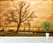 Tree Dawn wallpaper mural in-room view