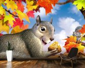 Squirrel mural wallpaper kitchen preview