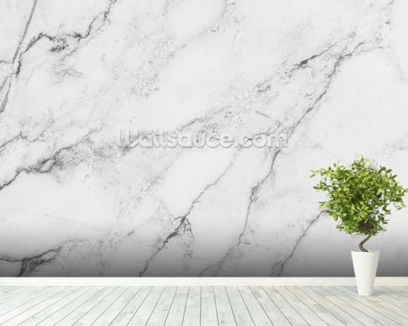 Black and white wall mural black and white marble for Black and white rose wall mural