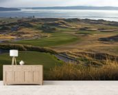 Chambers Bay, USA wall mural living room preview